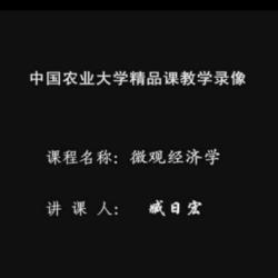 精品课·微观经济学 臧日宏