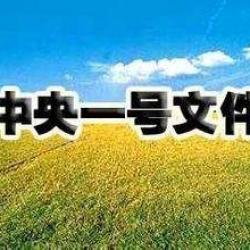 锡文系列讲座之六|我国农业支持保护政策